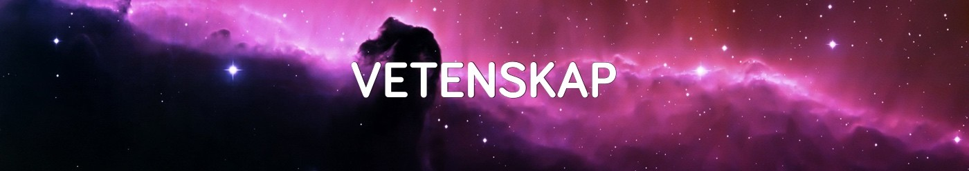 vetenskap-kat