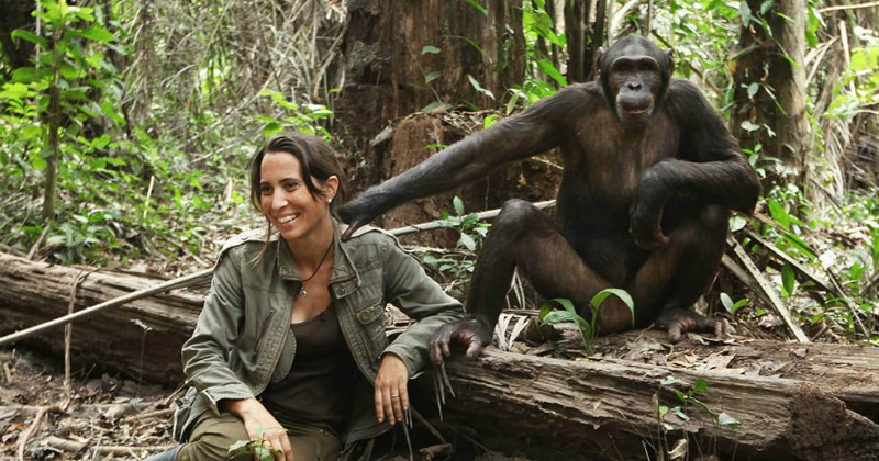 Wild Animal Reunions i TV4 Play